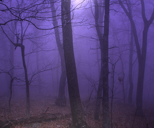 alternative, creepy, and dark image