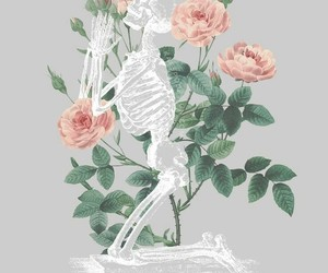 rose, wallpaper, and lockscreen image