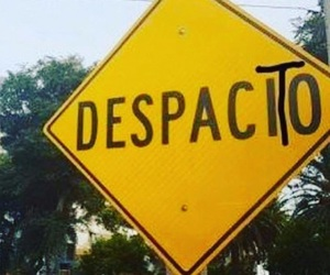 despacito and song image