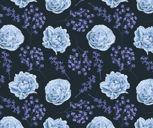 background, blue, and botanical image