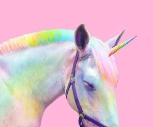 unicorn, pink, and rainbow image
