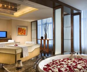 bathroom, room, and rose image