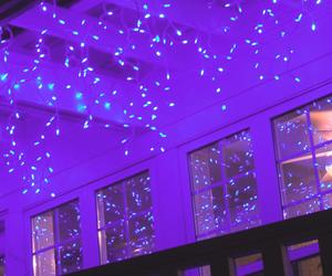 header, lights, and purple image