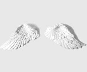 white, wings, and aesthetic image