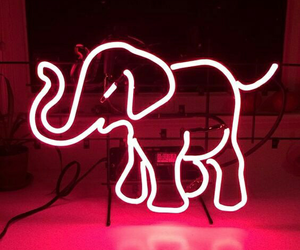 pink, elephant, and neon image