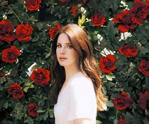 rose and lana del rey image