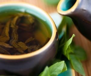 tea and yerba mate image