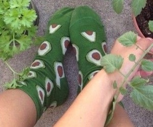 avocado, green, and socks image
