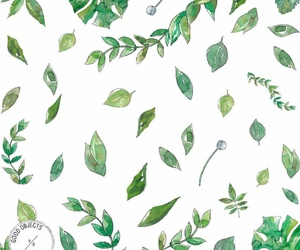 dibujo, green, and hojas image