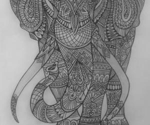 black, white, and Éléphant image