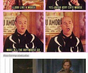 supernatural, moose, and funny image