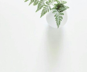 minimalist, white, and green image