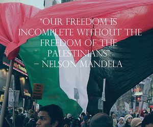 palestine, freedom, and nelson mandela image