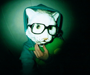 cat, mask, and glasses image