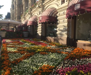 flowers, gum, and moscow image