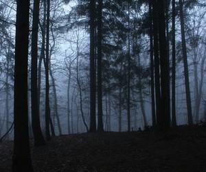 alternative, dark, and foggy image
