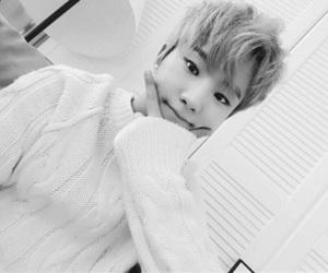 kpop, Seventeen, and hoshi image
