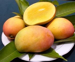 mango image