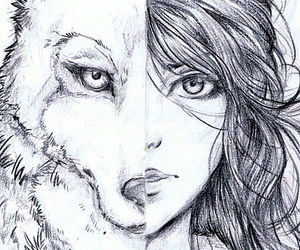 wild and wolf image