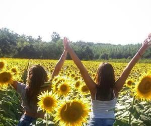 girls, summer, and sunflowers image