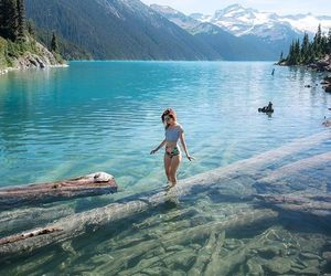 nature, summer, and beautiful image