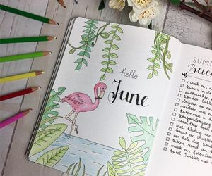 june, summer, and bullet journal image