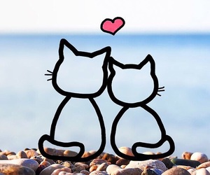 cat, love, and wallpaper image