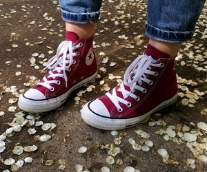 converse, petals, and red image
