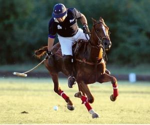 beautiful, england, and horse image