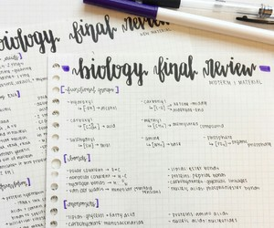 biology, school, and study image