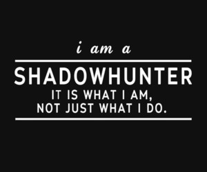 shadowhunters, books, and the mortal instruments image