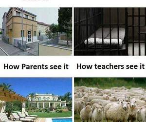 funny, haha, and jokes image