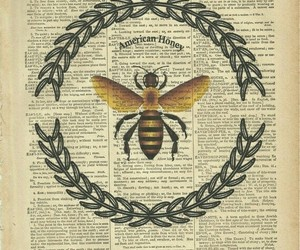 bee, grunge, and indie image