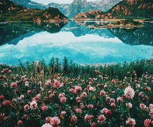 flowers, mountains, and lake image