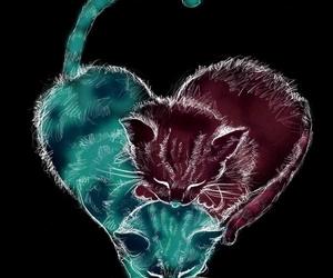 Gatos and corazón image