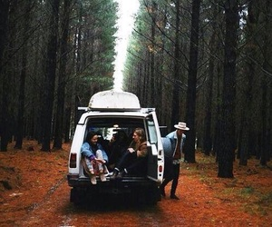 friends, forest, and nature image
