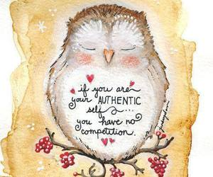 owl, quotes, and authentic image