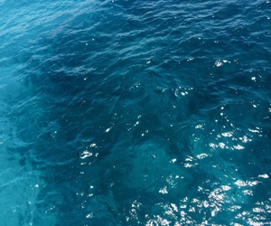 blue, water, and ocean image