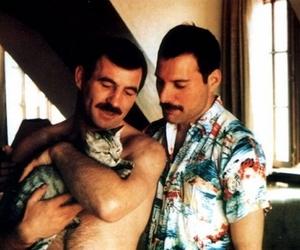 Freddie Mercury, cat, and Queen image