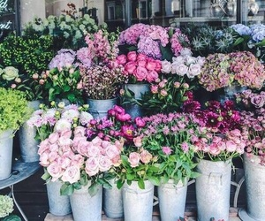 flowers, aesthetic, and hipster image