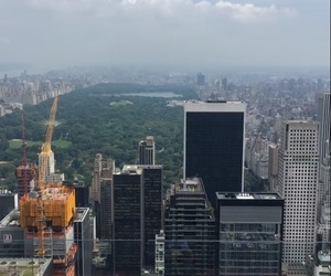 amazing, nyc, and Central Park image