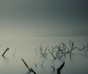 black and white, lake, and grey image