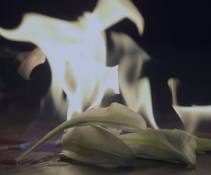 dark, fire, and flowers image