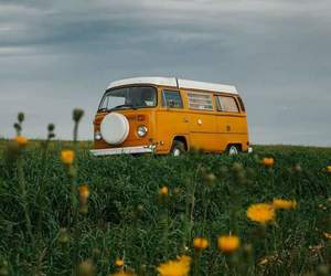 combi, nature, and flowers image