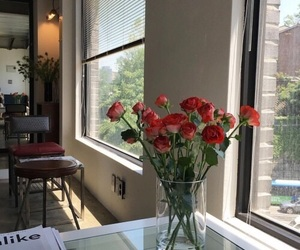 rose, flowers, and morning image
