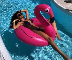 body, flamingo, and model image