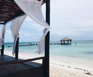 beach, mexico, and sun image