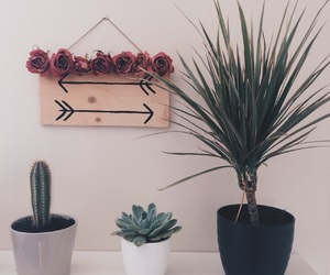 arrows, cactus, and decor image