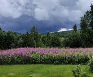 beautiful, clouds, and norrland image