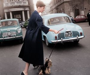 audrey hepburn, vintage, and classy image